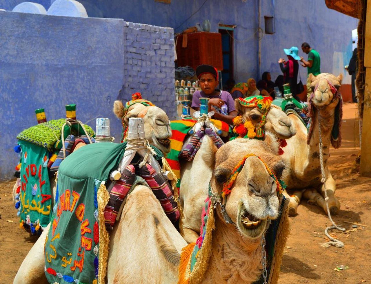 Nubian Village & Camel Ride Tour